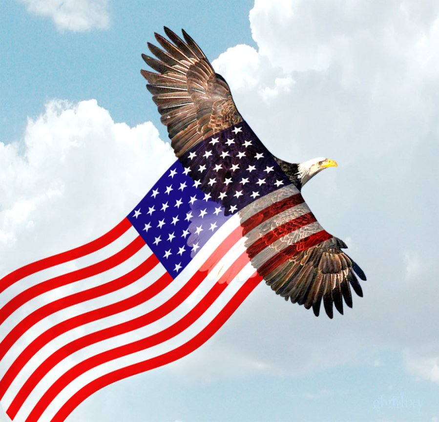 bald_eagle_flying_american_flag_by_xybutterfly-d4gbezm